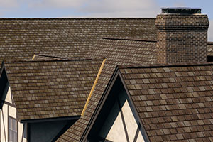 Roofing Contractors Wyoming MI